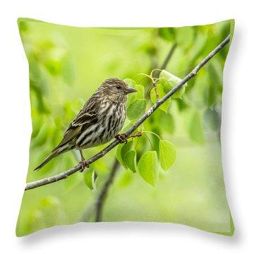 Pine Siskin On A Branch Throw Pillow