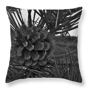 Pine Tree Throw Pillow by Deborah DeLaBarre
