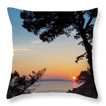 Throw Pillow featuring the photograph Pine Tree by Delphimages Photo Creations