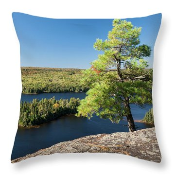 Throw Pillow featuring the photograph Pine Tree With A View by Elena Elisseeva