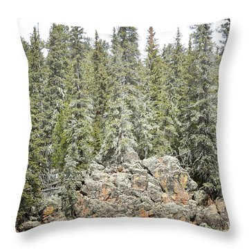 Throw Pillow featuring the photograph Pine Trees Rustic Mountain by Andrea Hazel Ihlefeld