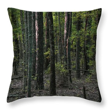 Throw Pillow featuring the photograph Pine Wood Sunrise by Skip Willits