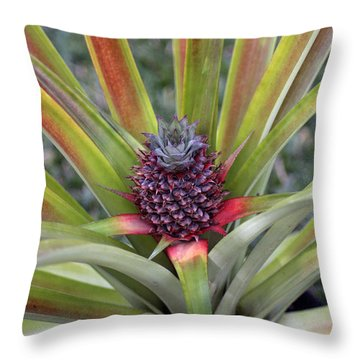 Pineapple, Oahu Throw Pillow