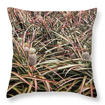 Throw Pillow featuring the photograph Pineapple Pano by Heather Applegate