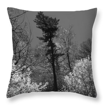 Pineing Away Throw Pillow