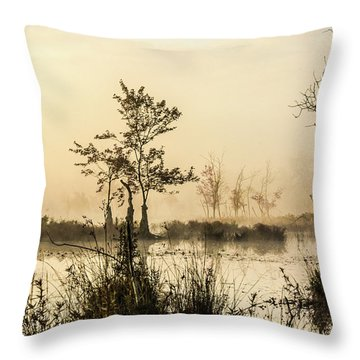 Throw Pillow featuring the photograph Pinelands - Mullica River by Louis Dallara