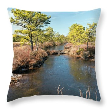 Pinelands Water Way Throw Pillow