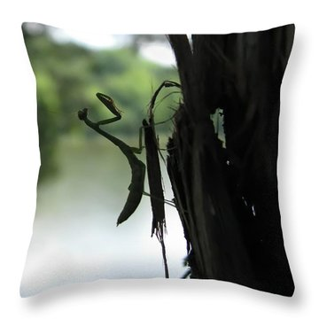 Pines And Prayers Throw Pillow by Misha Bean