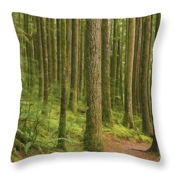 Pines Ferns And Moss Throw Pillow