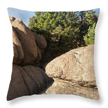 Pines In Granite Throw Pillow