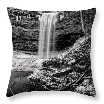 Piney Falls In Black And White Throw Pillow