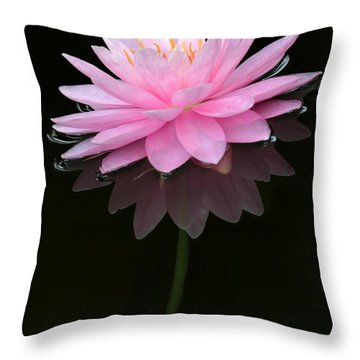Pink And Alone Throw Pillow by Sabrina L Ryan