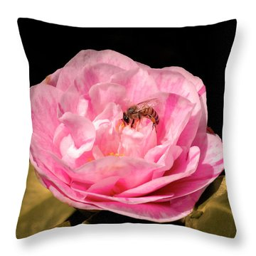 Throw Pillow featuring the photograph Pink And Bee by Howard Bagley