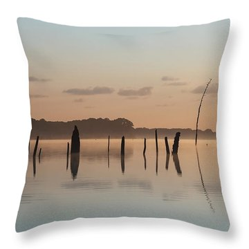 Pink And Blue Skies Throw Pillow
