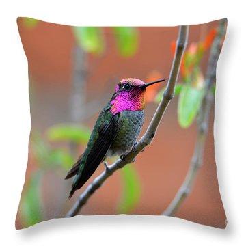 Pink And Gold Anna's Hummingbird Throw Pillow