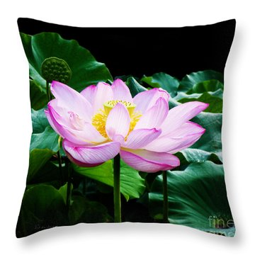 Pink And Green Floral Garden Ballet 11u Lotus Bloom Throw Pillow