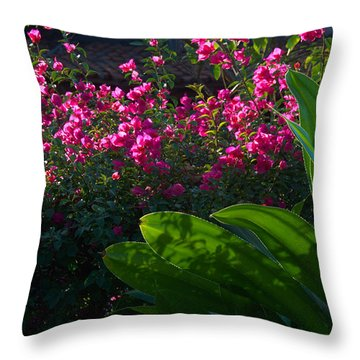 Throw Pillow featuring the photograph Pink And Green by Jim Walls PhotoArtist
