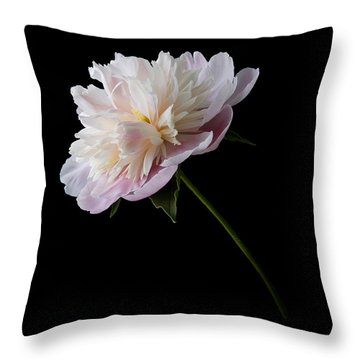 Pink And White Peony Throw Pillow