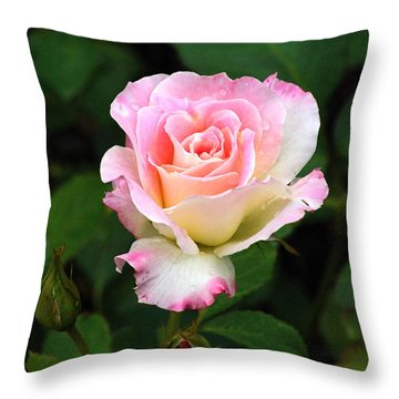Pink And White Rose Throw Pillow by Edward Sobuta