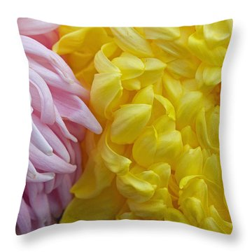 Pink And Yellow Mums Throw Pillow by Jim Gillen