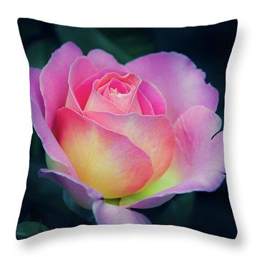 Throw Pillow featuring the photograph Pink And Yellow Single Rose by Julie Palencia