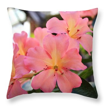 Pink And Yellow Vireya Throw Pillow