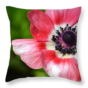 Pink Anemone Flower Throw Pillow
