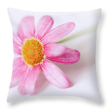 Throw Pillow featuring the photograph Pink Aster Flower II by Nick Biemans