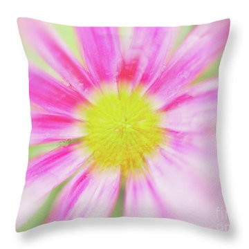Throw Pillow featuring the photograph Pink Aster Flower With Raindrops Abstract by Nick Biemans