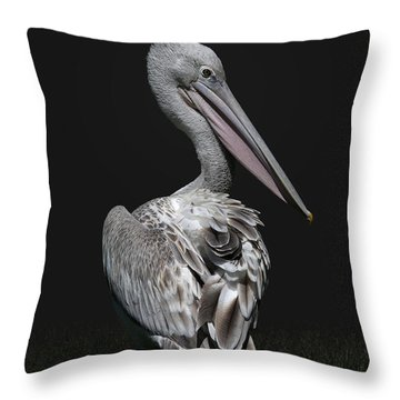 Pink-backed Pelican Rear View Throw Pillow