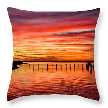 Pink Bay Throw Pillow