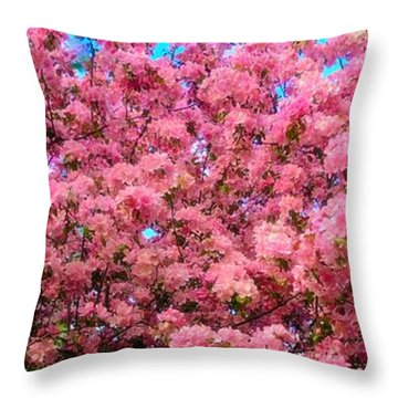 Pink Blossoms Of Spring Throw Pillow
