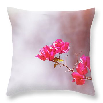 Pink Bougainvillea Flowers In Sunlight Throw Pillow