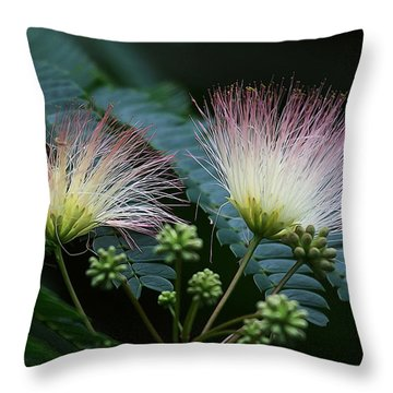 Pink Mimosa  Throw Pillow