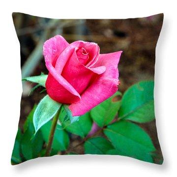 Pink Bud Throw Pillow