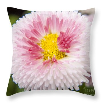 Pink Button Flower Throw Pillow by Darleen Stry