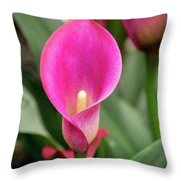 Pink Calla Throw Pillow