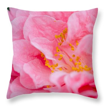 Pink Camellia Throw Pillow