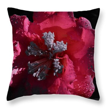 Pink Camillia And Selected Color Throw Pillow by Warren Thompson