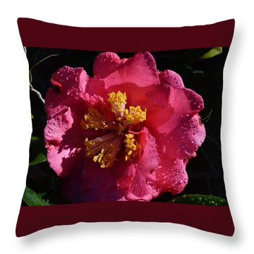 Pink Camillia With Raindrops Throw Pillow by Warren Thompson