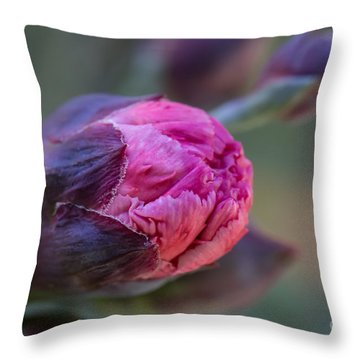 Pink Carnation Bud Close-up Throw Pillow