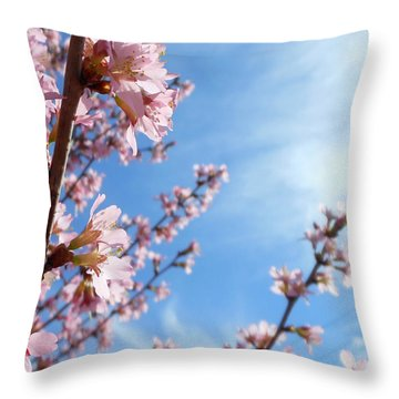 Pink Cherry Blossoms Branching Up To The Sky Throw Pillow