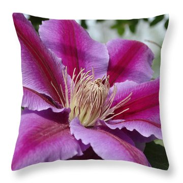 Pink Clematis Vine Throw Pillow