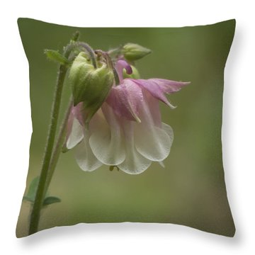 Pink Columbine 2015 Throw Pillow
