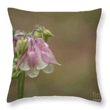 Pink Columbine II 2015 Throw Pillow