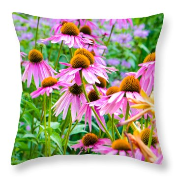 Pink Coneflower Throw Pillow
