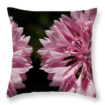 Pink Cornflowers Throw Pillow