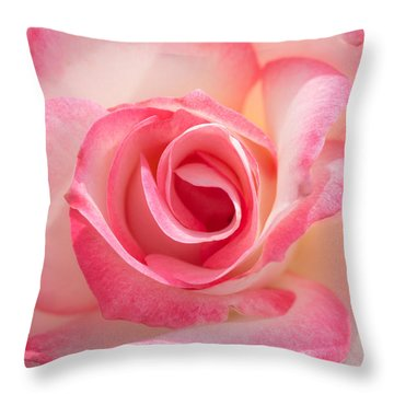 Pink Cotton Candy Rose Throw Pillow