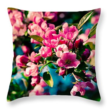 Throw Pillow featuring the photograph Pink Crab Apple Flowers by Alexander Senin