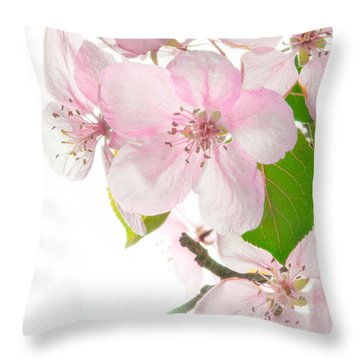 Pink Crabapple Blissoms Throw Pillow by David Perry Lawrence